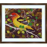 Bead embroidery kit «A-0206 Western Tanager»