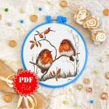Cross stitch pattern «pdf-T-0309 Robins»