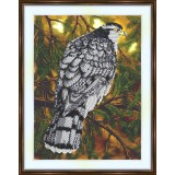Bead embroidery kit «A-0219 Watchful Hawk»